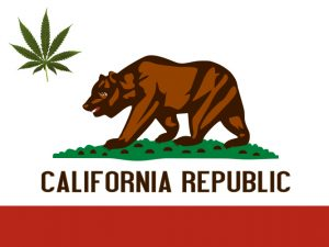 California Cannabis Track and Trace