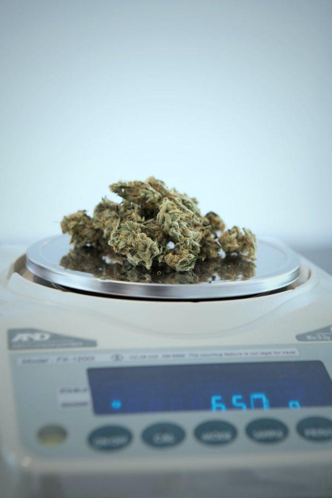 GeoShepard - weed on scale x1500